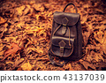 Leather backpack in autumn forest 43137039