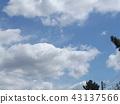 ท้องฟ้าสีครามและเมฆสีขาวด้านบน 43137566