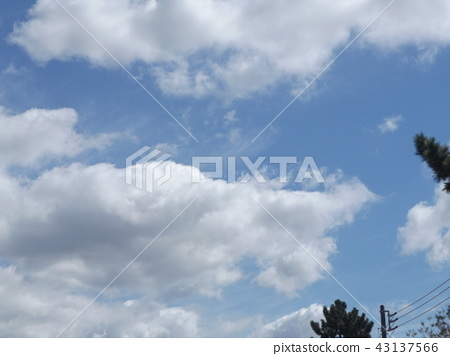 Top of the inage coast blue sky and white clouds 43137566