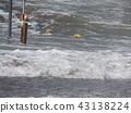 yellow, marine, maritime 43138224