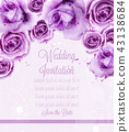 Watercolor pink wild roses isolated Vector 43138684