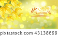 Yellow autumn leaves card 43138699