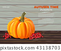 Autumn pumpkin card 43138703