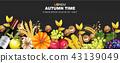 fruit,apple,fruits 43139049