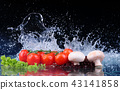 Salad, tomato and with water drop splash 43141858