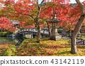 교토 禅林寺 · 에이 칸 단풍 43142119