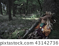 Scarecrow covered in dried leaves at a tree root 43142736