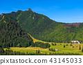 mountain, forest, landscape 43145033
