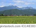 landscape, scenery, scenic 43146383