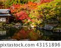 Pond of Lake Eastern Miyama Baida-ji in autumn 43151896