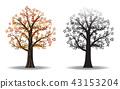 red autumn tree 43153204
