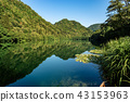 Lake of Levico with Water Lilies - Trentino Italy 43153963