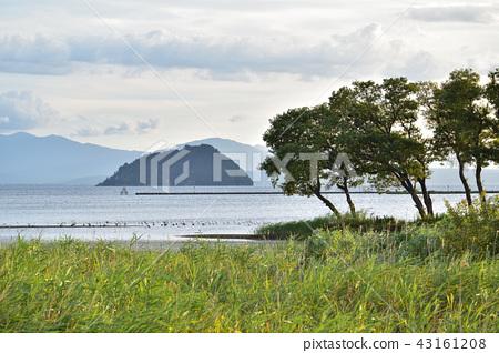 Sunset view of Lake Oku Biwa / Kohoku Waterfowl Park and Takefu Island 43161208