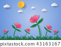 Pink flower field with grass and sky 43163167