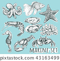 螃蟹 蟹 龙虾 43163499