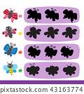 蝴蝶 昆虫 虫子 43163774