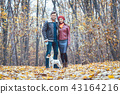 Couple in fall having walk with dog in a park 43164216