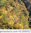 Naruko Gorge Miyagi Tohoku Japan 43166932
