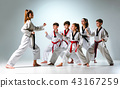 The studio shot of group of kids training karate martial arts 43167259