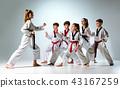 kids, people, taekwondo 43167259