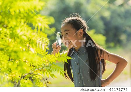 어린이,아이,어린아이,여자,여성,초등학생,관찰,돋보기,돋보기관찰,관찰일기,초록,나뭇잎관찰 43171775