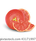 Realistic Pink 3d Grapefruit. Detailed 3d   43171997
