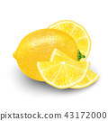 Realistic 3d Vector Illustration of sliced yellow  43172000