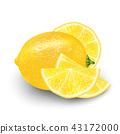 3d citrus fruit 43172000