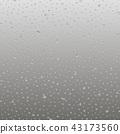 rain, window, condensation 43173560