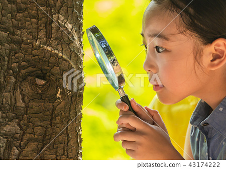 어린이,여자아이,여학생,관찰,돋보기,돋보기관찰,나무관찰,나무,야외활동,야외학습,야외,체험 43174222