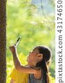 어린이,아이,어린아이,초등학생,관찰,돋보기,돋보기관찰,야외활동,야외학습,야외,자연학습,자연 43174650