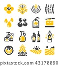 rapeseed icon 43178890