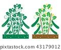 cucumber plant 43179012