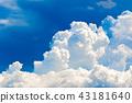 여름의 푸른 하늘 43181640