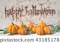 happy, halloween, pumpkin 43185178