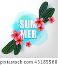 Summertime. Happy holidays. 43185568
