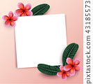 Pink Plumaria flower with copy space,  43185573