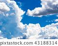 여름의 푸른 하늘 43188314