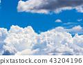 여름의 푸른 하늘 43204196
