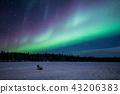"""""""加拿大西北地區""""耶洛奈夫的極光景觀 43206383"""
