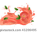 Grapefruit splash illustration. Splashing juice.   43206495