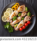squid food diet 43210213