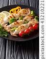 squid food diet 43210221