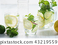 Refreshing summer drink with lemon and mint 43219559
