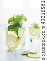 Refreshing summer drink with lemon and mint 43219561