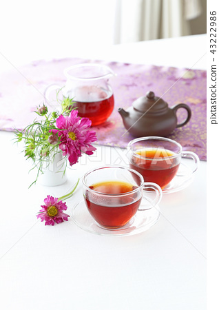 秋茶時間 43222986