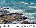 바다, 해안, 바닷가 43223737