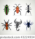 Insects animal dangerous icons set cartoon 43224934