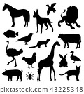 Animal Farm Pet Zoo Silhouettes Black Icon Vector 43225348