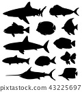 Illustration vector of different kinds Fish Vector 43225697